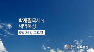 9월 26일(토) [매일 새벽 6시 업데이트됩니다]