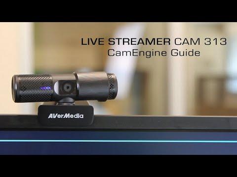AVerMedia Live Streamer CAM 313 CamEngine (PW313) Guide