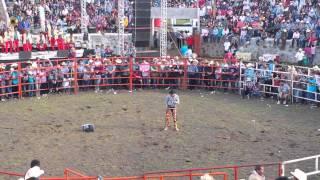 Show Del Payaso El Fulanito - Jaripeo, San Vicente