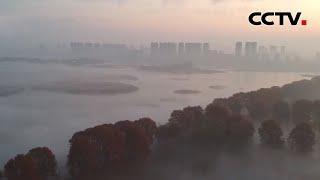 江苏东海县西双湖出现平流雾景观 |《中国新闻》CCTV中文国际 - YouTube
