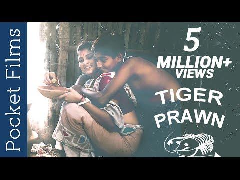 A mother and son story - Golda Chingri - Tiger PrawnKaynak: YouTube · Süre: 3 dakika51 saniye
