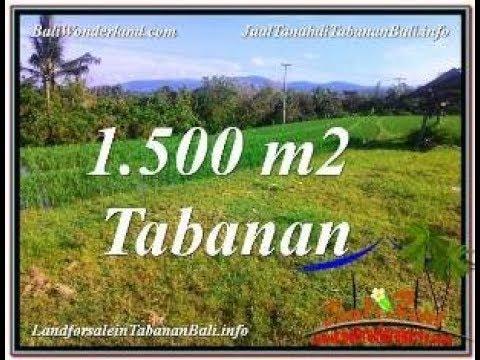 FOR SALE Beautiful 1,500 m2 LAND IN TABANAN BALI TJTB353