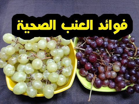 22 فائدة لتناول 10 حبات من العنب واهم فوائد العنب السحرية لصحتك !!