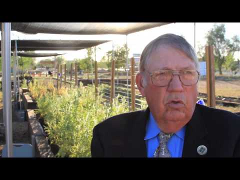Non-profit: Farming Success - Tiger Mountain Foundation - Youth Outreach - Phoenix, AZ