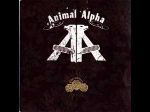 Animal Alpha - Catch Me [lyrics in description]