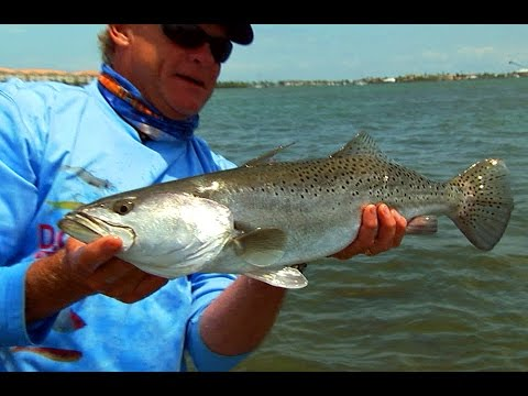 Monster Trout fishing tips and Pompano fish catching