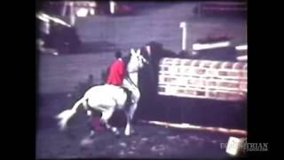 Popular Videos - United States Equestrian Federation & Jumping