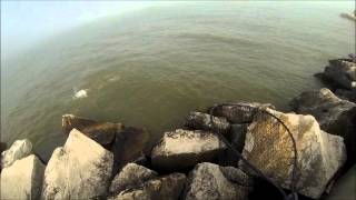 Algoma, WI Salmon Run