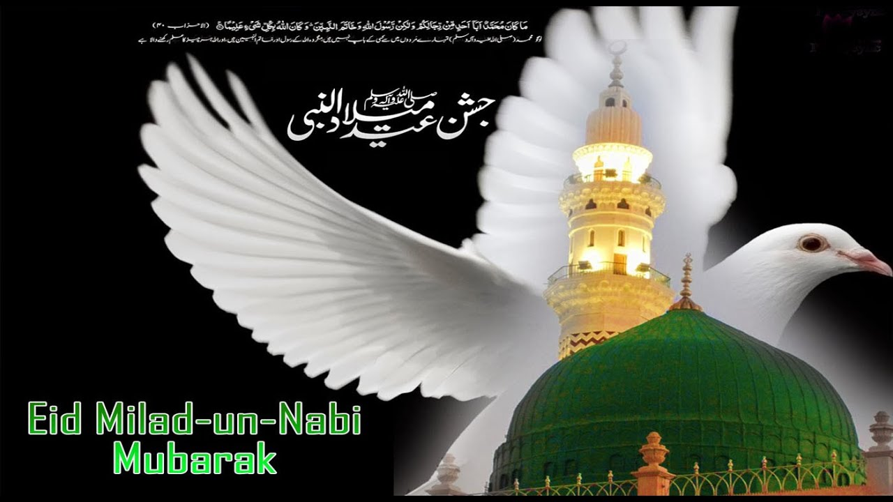 Eid milad un nabi 2016 mubarak wishes greetings sms whatsapp eid milad un nabi 2016 mubarak wishes greetings sms whatsapp video message e card m4hsunfo