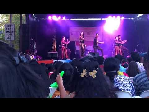 Desi Beats Multicultural Festival 2018