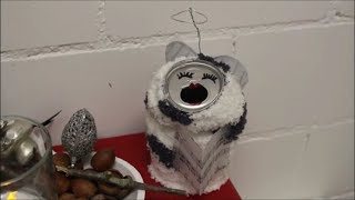 DIY: Weihnachten Upcycling: Alu Dose Engel / Christmas Soda Can Angel