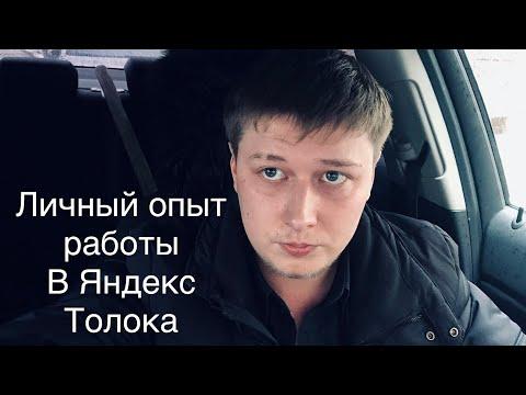 Правда о Яндекс Толока в 2019 году. Стоит ли там зарабатывать?