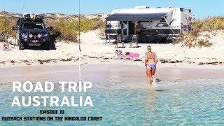 BEACH CAMPS ON THE NINGALOO COAST ARE INSANE | ROADTRIP AUSTRALIA EP.10 |