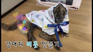직접 만드는 강아지 비옷 (강아지 옷 만들기)