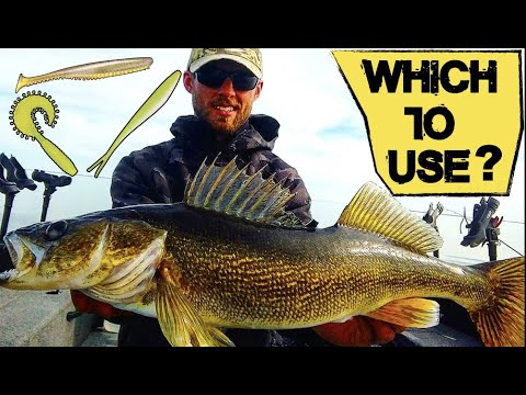 Choose The Right Bait For Walleye Fishing