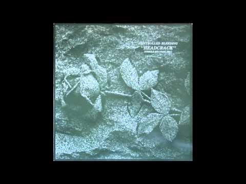 Controlled Bleeding - Firelight pt. 2 (Original mix)
