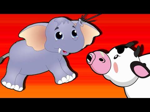 Animals In Sinhala For Kids | Sounds Of Animals | සතුන් | බල්ලා | බළලා | සිංහයා