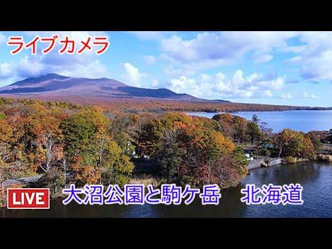 ライブ 北海道 カメラ 峠