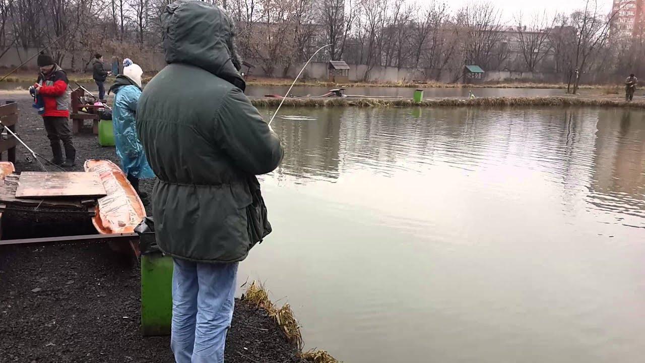 Платная рыбалка на прудах тимирязевской академии