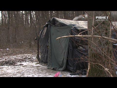 TVRivne1 / Рівне 1: Ромів, які проживали табором у лісі поблизу села Кустин, переселили у житловий будинок