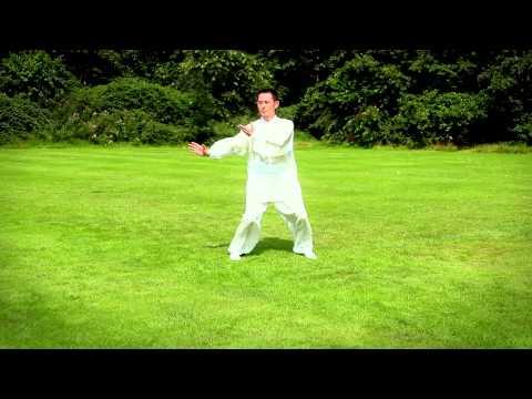 Wushu Team Zhao: Tai Chi 24 Form Yang Style (Shifu Dong Zhao)