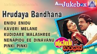 hrudaya bandhana i audio jukebox i ambareeshsudharani i akash audio