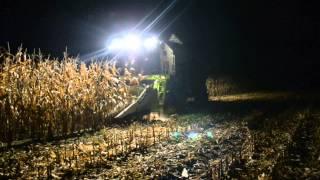 Żniwa kukurydziane 2013 | Kukurydza na ziarno - Claas Tucano 320 | HD |