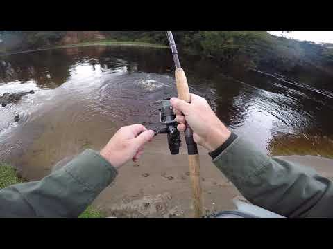 5 Sep 19 - A Nice 10 Lb Salmon On The Border Esk This Morning.