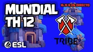 MUNDIAL ESL de TH12 desde TRIBE GAMING