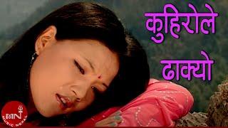 Kuhirole Dhakyo by Ava Mukarung & Kaushila Rana