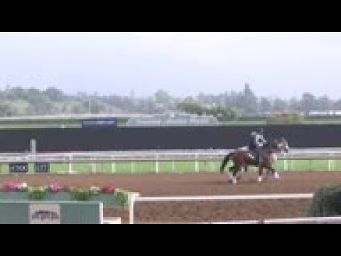 Calif. Horse Racing Board Votes To Limit Whips