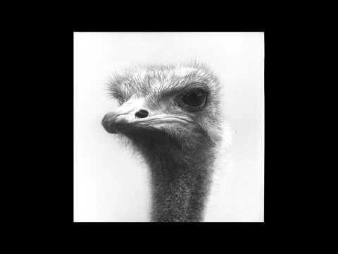 Dole & Kom  Quetschkomode MollonoBass Remix