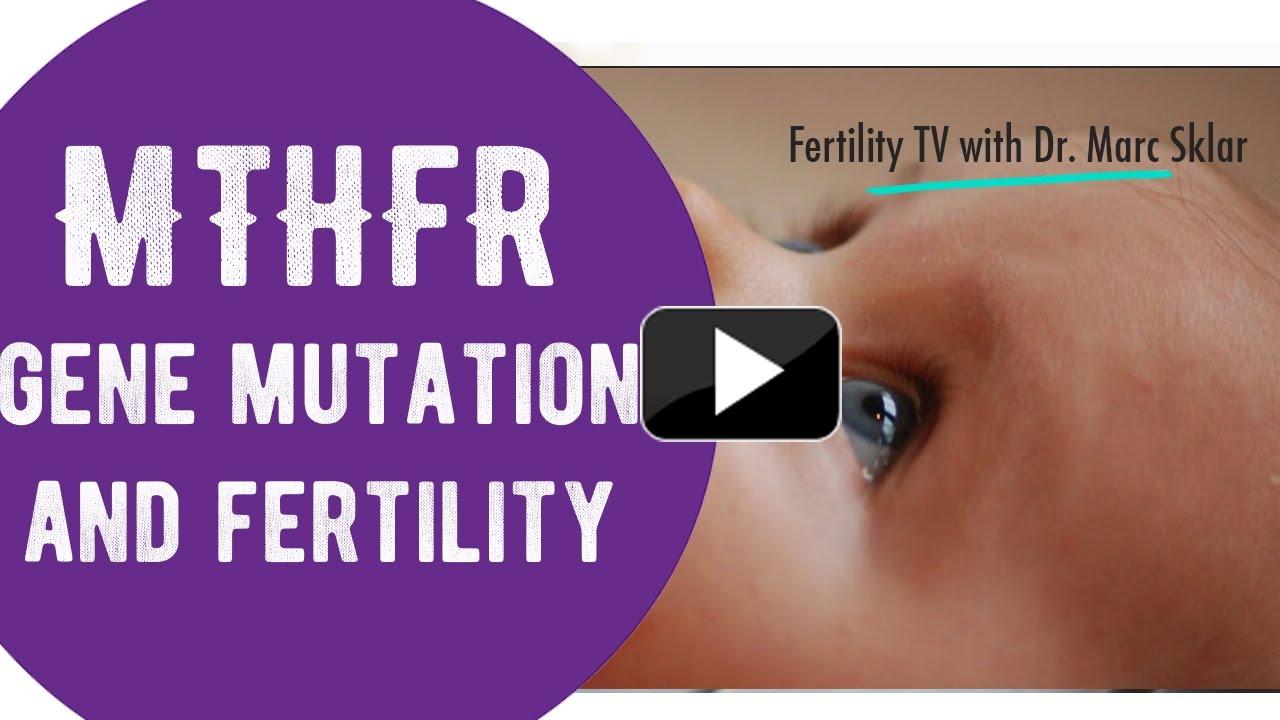 MTHFR gene mutation and fertility