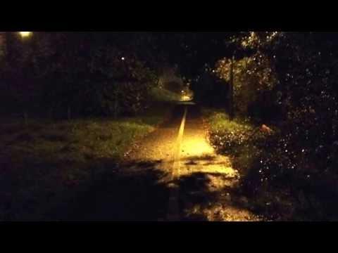 Fliptrick - Sweet Dreams are Made of Screams (Remix)