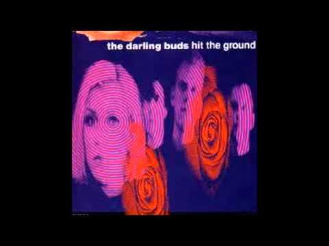 The Darling Buds Hit The Ground