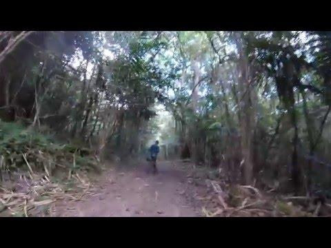 Pico Duarte Hike 2016 NYC-STI