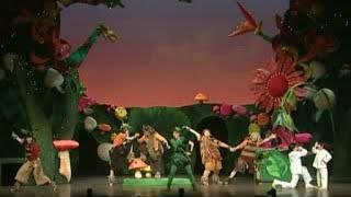 ブロードウェイミュージカル『ピーターパン』2009