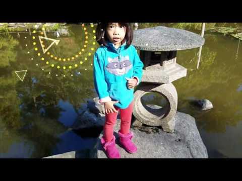 Japanese Garden Seattle, WA (best HD)