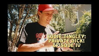 EDDIE TINGLEY: PRIVATE DICK - EPISODE IV: SHAGGY PUNJAB & TMOTMKWTLBOI.