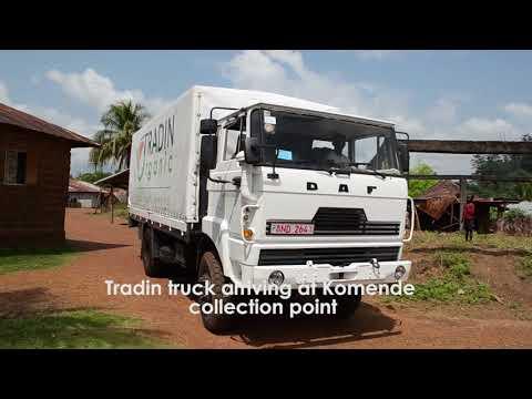 Tradin Sierra Leone - Organic Cocoa Sourcing Project