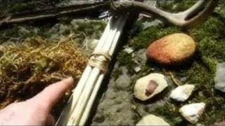 Primitive Tools