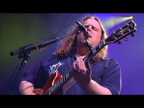 Gov't Mule - Lay Of The Sunflower