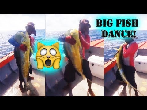 Dancing with a BIG Fish in Anguilla