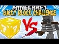 LUCKY BLOCK VS MUTANT SKELETON ! | LUCKY BLOCK CHALLENGE |[FR]