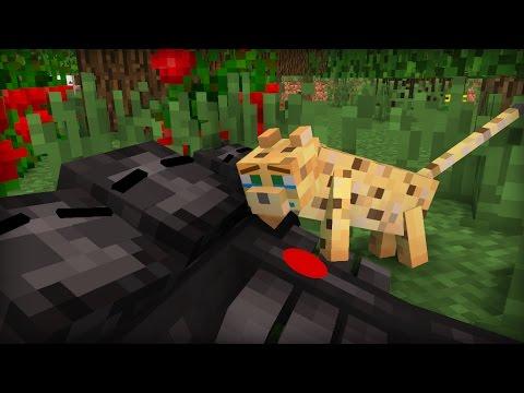 Wither Life I Minecraft Animation Youtube