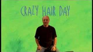 Barney Saltzberg, Crazy Hair Day