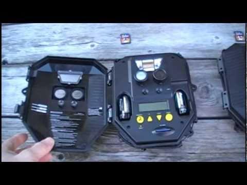 Trail Camera Setup Whats In The Yard Youtube