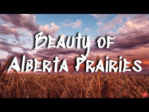 The Beauty of Alberta's Prairies || Rural Alberta in the Summer