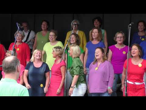 AmaZing Hengelo - Ladies Choir - It's Raining Men