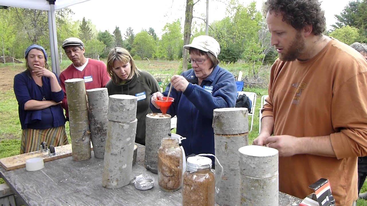 Atelier culture de champignons - Clarendon, Québec - 19 ...